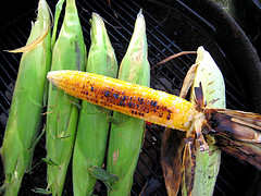 Your Guide To Fresh Corn On The Cob